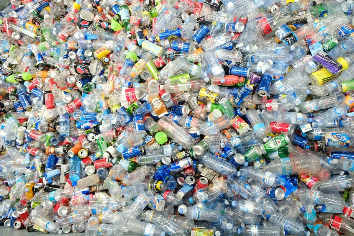 Single-use Plastic to Be Fully Banned in Ottawa by the End of 2021